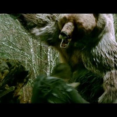 Ο James Marsden εναντίον μιας πολύ θυμωμένης αρκούδας στο «Into the Grizzly Maze»