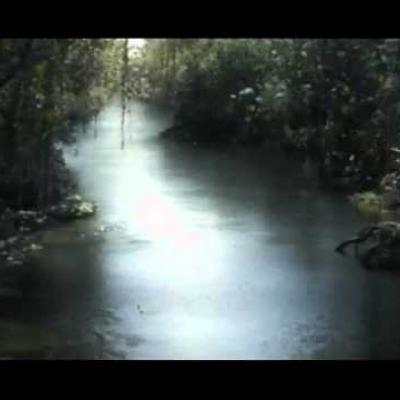 Πρώτη συντομότατη ματιά στο Βιβλίο της Ζούγκλας του Jon Favreau