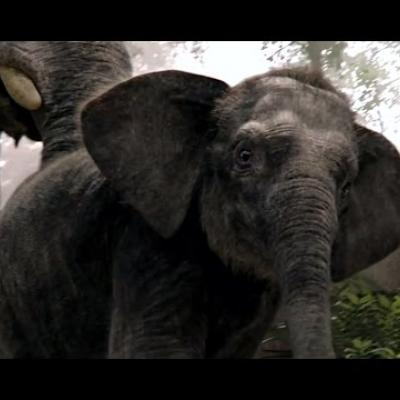 Νέα ματιά στο ολοκαίνουργιο «Jungle Book»