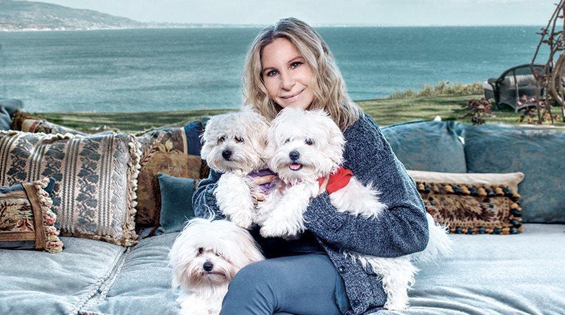 Η Μπάρμπαρα Στρέιζαντ κλωνοποίησε την αγαπημένη της σκυλίτσα